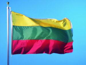 Получение и оформление литовского гражданства для россиян, украинцев, белорусов