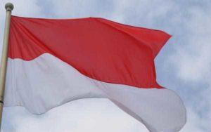 Государственный флаг Монако