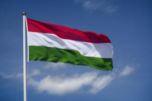 Получение и оформление венгерского гражданства для россиян, украинцев, белорусов