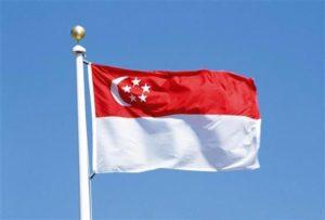 Государственный флаг Сингапура