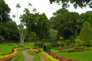 Королевский сад пряностей на острове Маэ