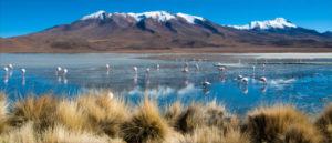 Природа Боливии