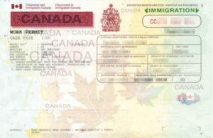 Так выглядит канадское разрешение на работу (work permit)