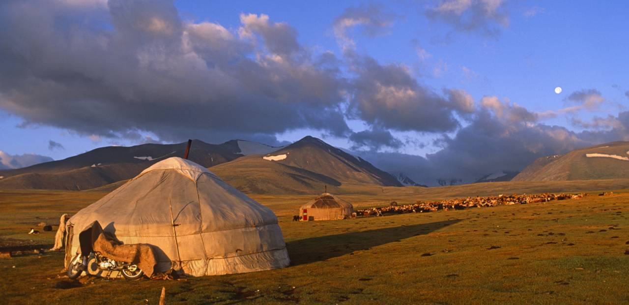 my country mongolia
