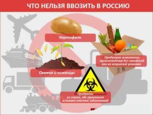 Что нельзя ввозить в РФ