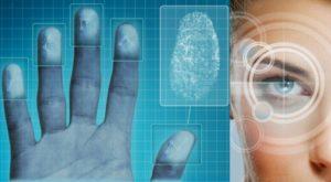 Биометрическая шенгенская виза: способы получения и оформление