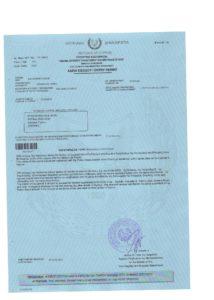 Образец разрешения на работу на Кипре (work permit)