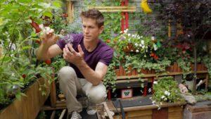 Садовник - популярная работа на лето в Майами