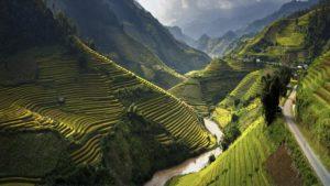 Вьетнамские рисовые террасы