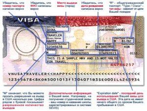 Подробная схема визы в США.