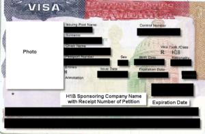 Рабочая виза категории H1B (образец)
