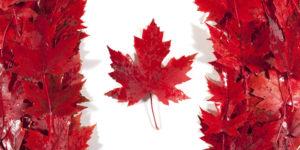 Эмиграция в Канаду – как переехать на ПМЖ из России и Украины