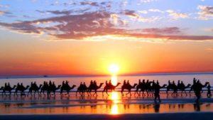 Прогулка на верблюдах по марокканскому пляжу