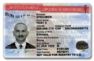 Разрешение на работу в США (образец)