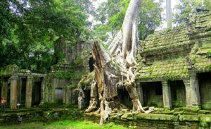 Пропавший город Ангкор.