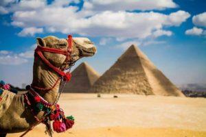 Когда лучше ехать в Египет и как отдыхать в разное время года?