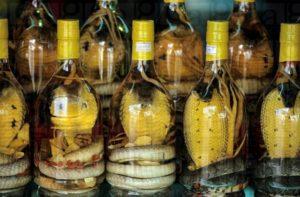 Что привезти из Вьетнама: сувениры, подарки, лекарства?