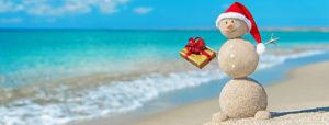 песковик на мальдивском пляже