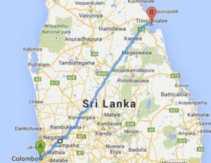 Дорога из Коломбо до Тринкомали