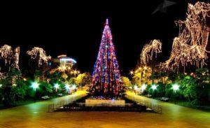 Главная новогодняя елка Сочи