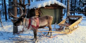 Встречаем Новый год в Финляндии. Особенности, традиции, цены.
