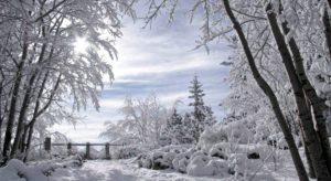 Куда можно съездить отдохнуть в России зимой? Идеи, цены, советы