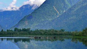 Телецкое озеро на Горном Алтае