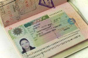 Виза D - национальная виза, позволяющая работать, учится и заниматься любой деятельностью в рамках закона .